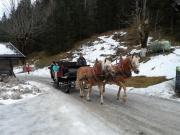 Pferdeschlittenfahrt in die Falzthurn